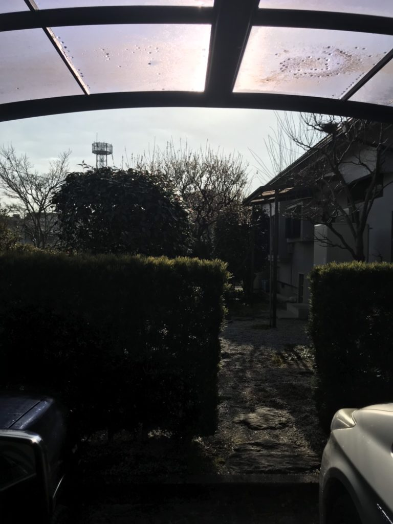 夏の残りのお手入れ〜✂️朝倉市 H様邸2/2